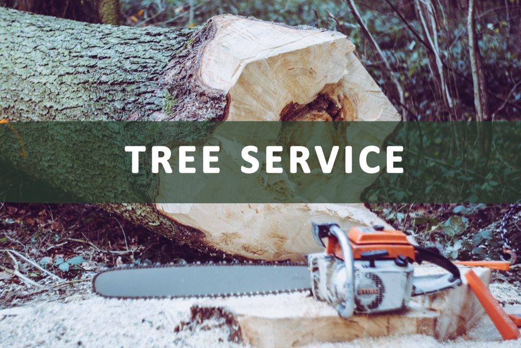 Tree Service Taking Payments